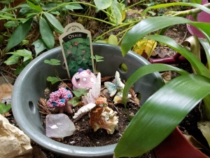 FairyGarden1